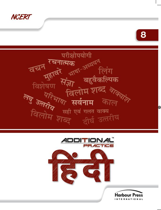 Additional Practice Hindi Vasant Class VIII